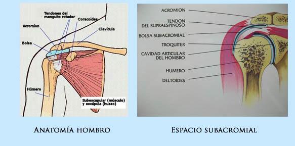 Hombro Doloroso | Doctor Javier Vaquero Ruipérez